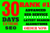 rank you First in Google, 60 PR10 Niche Backlinks, 30days SEO