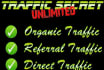 give Unlimited Website Traffic for 45 Days