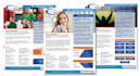 design One page Sales Sheet within 24hours
