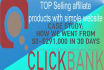build 12 money making of Top clickbank affiliate product websites