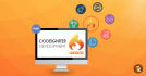 solve any issue of   CodeIgniter