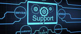 do provide IT support in hosting and website