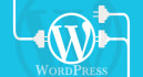 create a new Website in WordPress or fix any bug in existing WordPress site