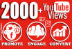 do HUGE Youtube Video Targeted Social Promotion for High Quality Traffic