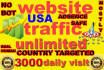 send usa targeted website,traffic,3000 daily visitors