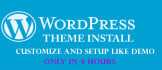 install WordPress, Theme and Plugins within 4 Hours