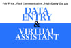 do data entry for you with high accuracy and in quick time