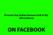 promote your business to FB 9M Audience