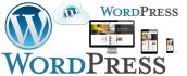develop static wordpress website