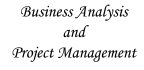 provide business and project consulting related to IT