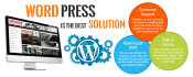design, build wordpress website