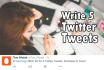 write captivating twitter posts for your article