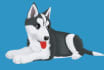 cartoonize your Dog or furry pet with my style