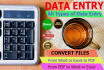do Data Entry and file conversion SKILLFULLY
