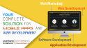 develop a Wordpress eCommerce website