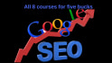 give you 8 SEO training course