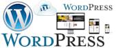 do WordPress Installation, Customization