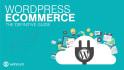 make Ecommerce wordpress website