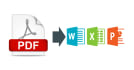 convert PDF to Word on 5 files