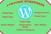 fix WordPress errors, performance asap