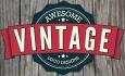 design Professional Vintage Logo For You