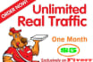 drive Crazy Traffic to Your Website Or Blog
