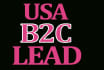 give you USA b2c lead with emails