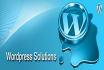 customize any WordPress site within 4 days