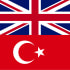 translate from English to Turkish or vice versa for you