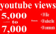 make a Youtube video Promotion in 12 Hrs