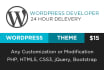 customize and fix wordpress theme or site fast