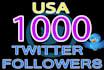 add Permanent 1000 USA Twitter Followers