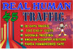send 100 daily website traffic for one month
