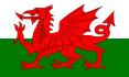 translate text from English to Welsh or vice versa