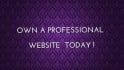 create professional wordpress website and upload content
