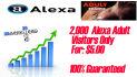 send 2000 Adult alexa visitors for increase your alexa rank