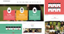 design and develop an eye catching dynamic website