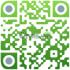 create a custom QR code for your business