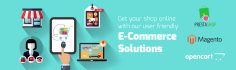 create any web development and ecommerce solution