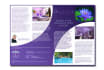 design flyers and brochures