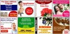 design a Professional  Amazing banner Advertising, web banner