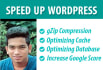 speed up your WordPress Speed with Google PageSpeed in 24 hours