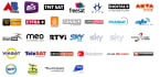 provide cccam cline or mgccamd for sky uk and all european dth providers