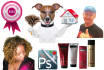 professionally cut out your photos or product images