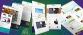 make a WordPress Website or WordPress Custom Design