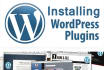 install Wordpress, Theme and plugins