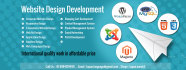 develop any type of website as per your requirement