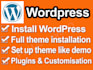 install wordpress and theme and plugins
