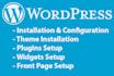 design a professional wordpress website