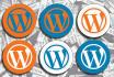 fix any bugs and create wordpress website